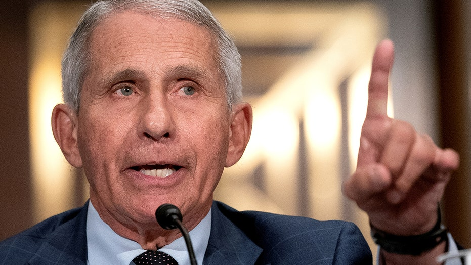 Fauci warns more severe COVID-19 variant could emerge as cases rise: US 'could really be in trouble'
