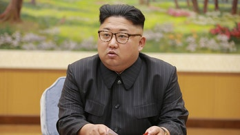 North Korea appears to have restarted key nuclear reactor: UN watchdog
