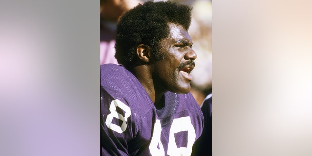 Defensive tackle Alan Page of the Minnesota Vikings. (Richard Stagg/Getty Images)