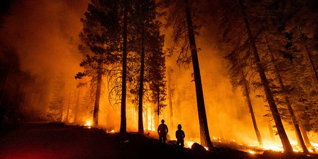 Cal Fire Capts. Derek Leong, right, and Tristan Gale monitor a firing operation, where crews set a ground fire to stop a wildfire from spreading, while battling the Dixie Fire in Lassen National Forest, California, on Monday, July 26, 2021. (Associated Press)