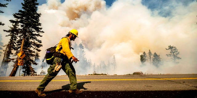 A firefighter battles the Dixie Fire along Highway 89 in Lassen National Forest, Calif., on Monday, Aug. 16, 2021. Critical fire weather throughout the region threatens to spread multiple wildfires burning in Northern California.
