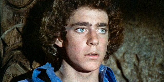 Barry Williams starred as Greg Brady in the beloved television series.