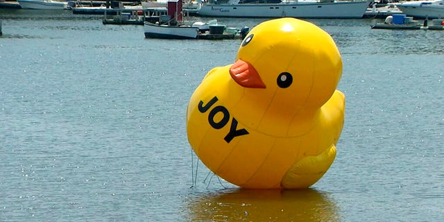 A giant rubber duck appeared in the harbor in Belfast, Maine, on Saturday but residents still don't know how it got there. (New England Cable News/Kenn Tompkins via AP)
