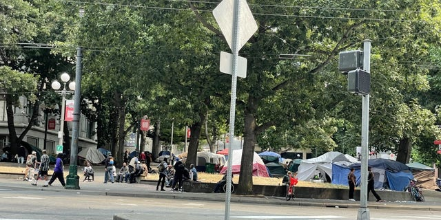 A view of the homeless encampment at Seattle's City Hall Park