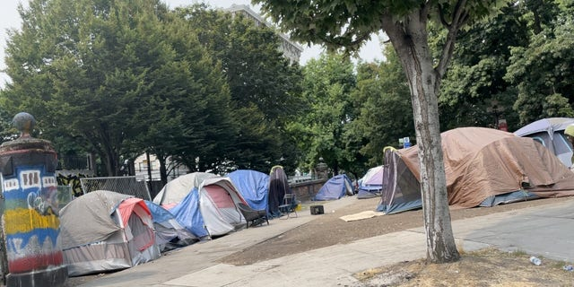 Another view of the homeless encampment at Seattle's City Hall Park.