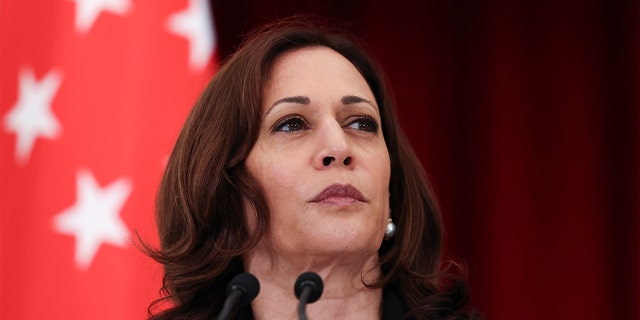 U.S. Vice President Kamala Harris attends a joint news conference with Singapore's Prime Minister Lee Hsien Loong in Singapore Monday, Aug. 23, 2021. (Evelyn Hockstein/Pool Photo via AP)