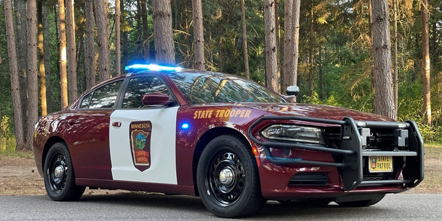 A former Minnesota State Trooper who took a woman's cell phone after she crashed her car then texted nude photos of her to his personal phone was sentenced to two years of probation Tuesday, the Star Tribune reported.