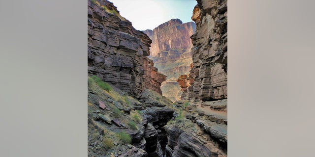 An Oregon man died after he fell 50 feet while hiking at the Deer Creek Narrows within Arizona's Grand Canyon National Park on Saturday, park officials said.
