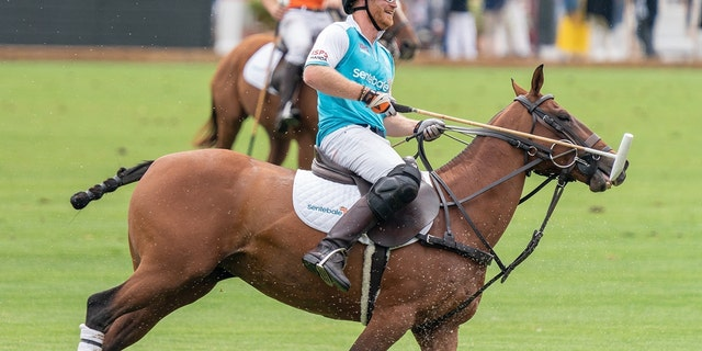 Prince Harry rode horseback at The Aspen Valley Polo Club, in Aspen, Colorado as part of a game in aid of his charity Sentebale.