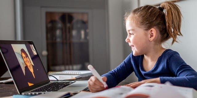 به گفته شرکت امنیتی نرم افزاری McAfee ، شیوه های انعطاف پذیر یادگیری به معنای وابستگی بیشتر به رایانه ، اتصال آنلاین و برنامه های کاربردی یادگیری است و مدارس را به طور فزاینده ای در معرض حملات سایبری قرار می دهد.