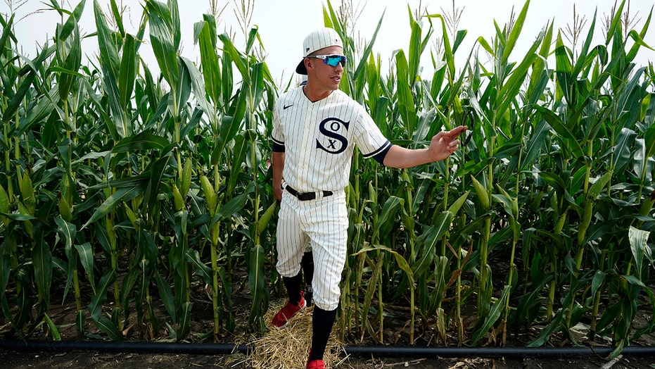 Chisox, Yanks awed at Field of Dreams, MLB promises repeat