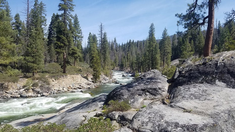 California family of 3 and their dog found dead in remote hiking area in state