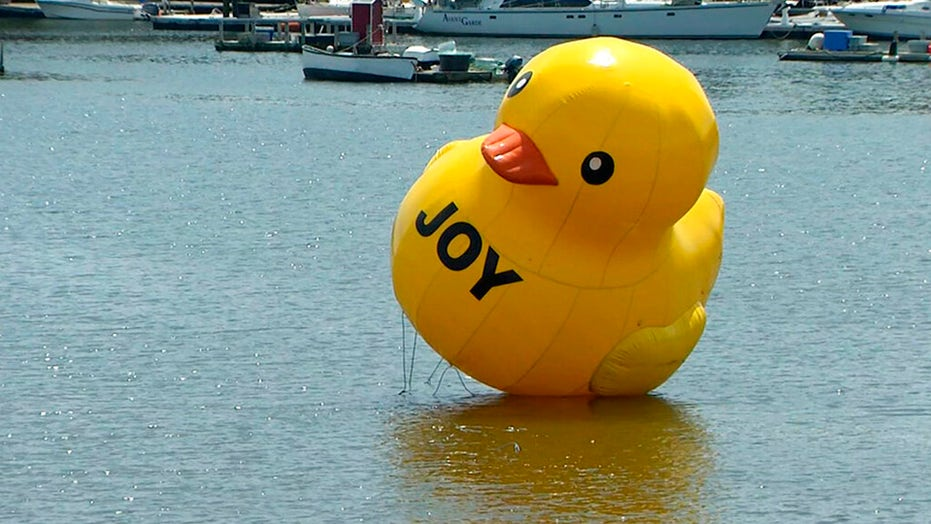 Huge rubber duck appears in Maine harbor, amuses residents: 'It's wonderful'
