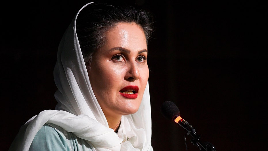 Afghan director issues warning of massacres, child brides, banned arts amid Taliban takeover