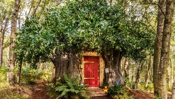 You can stay in Winnie the Pooh's treehouse in the Hundred Acre Wood