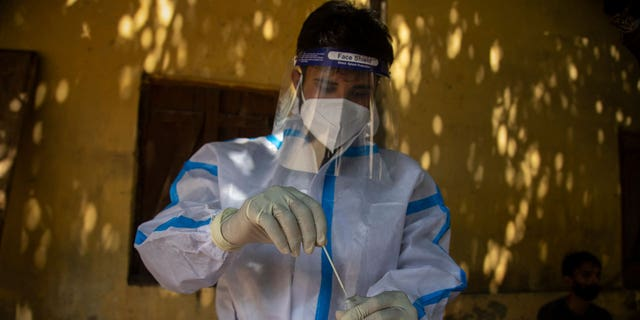 A health worker collects a nasal swab sample to test for COVID-19 in a shop in Gauhati, India, Friday, Sept. 3, 2021. (AP Photo/Anupam Nath)