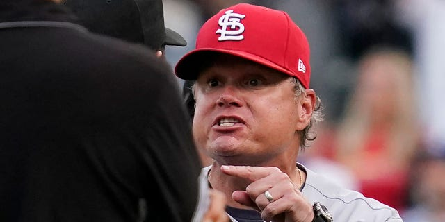 St. Louis Cardinals manager Mike Shildt, right, argues with umpire Doug Eddings during the ninth inning of a baseball game against the Chicago Cubs in Chicago, Sunday, Sept. 26, 2021. Shildt was ejected by umpire Bill Miller. (AP Photo/Nam Y. Huh)
