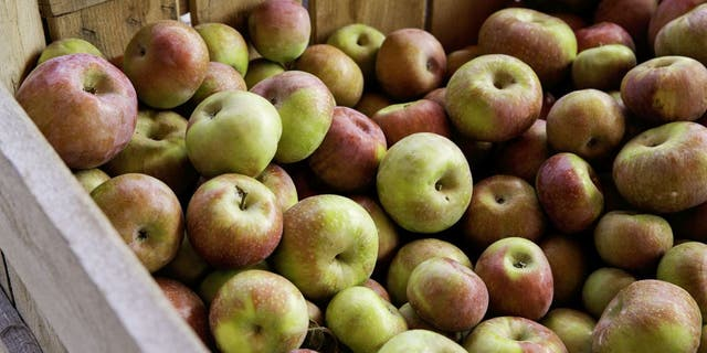 Orr's Farm Markethas fresh baked apple cider doughnuts.