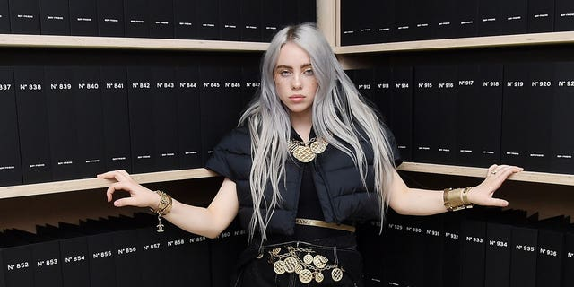 Singer Billie Eilish spoke out against Texas' controversial abortion law.