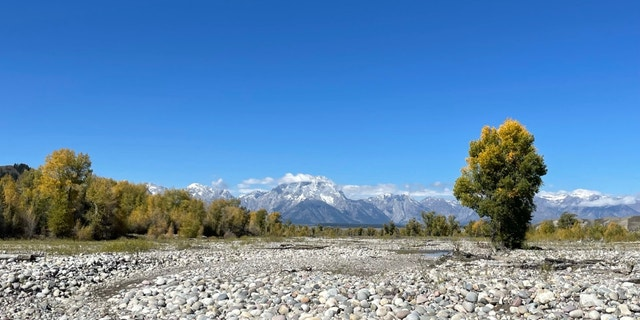 Spread Creek in Bridger-Teton National Forest (Fox News, Audrey Conklin)