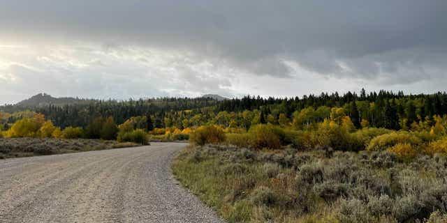 Bridger-Teton National Forest in Moose, Wyoming.