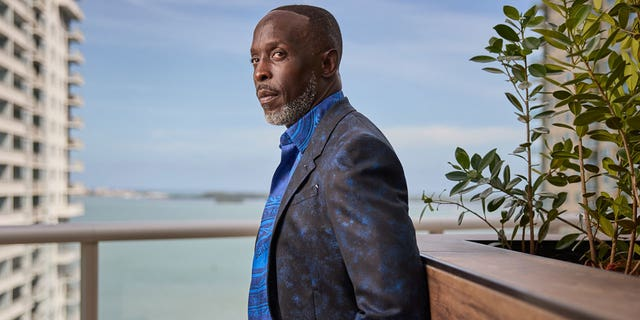 Michael K. Williams was known for his roles in 'The Wire,' '12 Years A Slave' and 'Boardwalk Empire.'