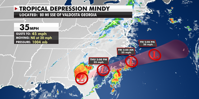 Tropical Depression Mindy makes landfall