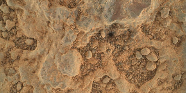"""Persévérance a pris ce gros plan d'une cible rocheuse surnommée """"Renard"""" À l'aide de sa caméra WATSON le 11 juillet 2021, le 139e jour Sol ou Sol de la mission.  La taille de la caméra est d'environ 1,4 x 1 pouce (3,5 cm x 2,6 cm)."""
