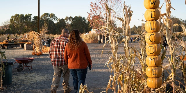 In postcard-worthy Sonoma County, you'll want to fit in a trip to this spectacular farm experience.