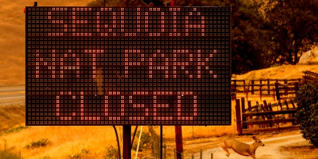 A sign announces the closure of Sequoia National Park, where the KNP Complex Fires are burning, martedì, Sett. 14, 2021, in Tulare County, Calif. Individually named the Colony and Paradise Fires, the blazes are burning near the Giant Forest, casa per più di 2,000 giant sequoias.