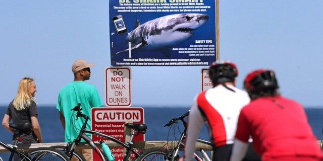 In this May 22, 2019 file photo, a couple stands next to a shark warning sign while looking at the ocean at Lecount Hollow Beach in Wellfleet, Massachusetts.