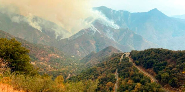 In this Sunday, 九月. 12, 2021 photo released by the KNP Complex Fire Incident Command, smoke plumes rise from the Paradise Fire in Sequoia National Park, 牛犊. In the southern Sierra Nevada, two fires ignited by lightning are burning in Sequoia National Park.