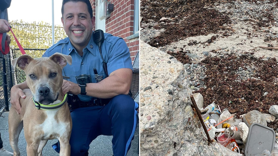 Massachusetts police rescue dog chained to rod and left to drown in incoming tide; owner arrested