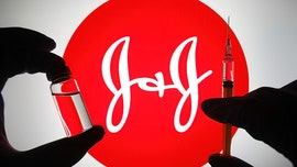 FDA panel endorses Johnson & Johnson COVID-19 vaccine booster with 2-month gap for ages 18 and up