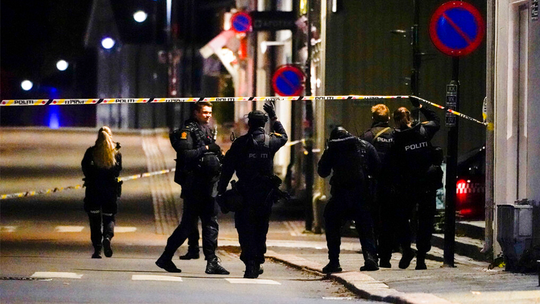 Norway police say man with bow and arrow kills several people, others injured