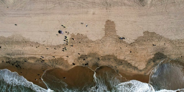 In this aerial image taken with a drone, beach goers are seen as workers in protective suits continue to clean the contaminated beach in Huntington Beach, Calif., Monday, Oct. 11, 2021. Huntington Beach reopened its shoreline this morning after water testing results came back with non-detectable amounts of oil associated toxins in ocean water, city officials and California State Parks announced.