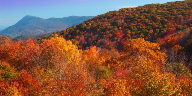Elk Knob State Park is where you can scope out Mount Jefferson, Grandfather Mountain, Mount Mitchell, and the Iron Mountains of Virginia and Tennessee.
