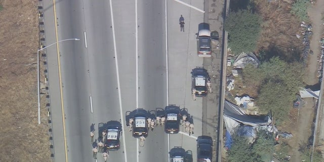 A homicide suspect was fatally shot on a Los Angeles freeway Tuesday morning.