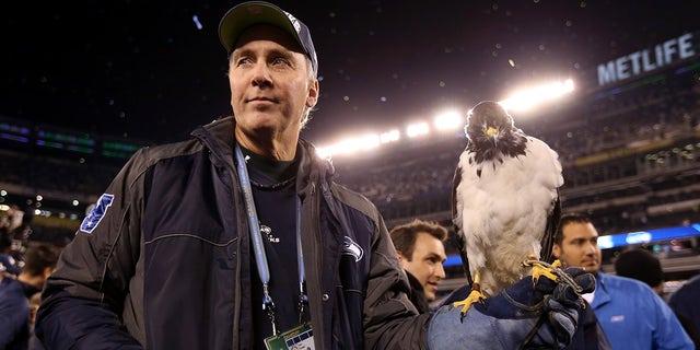 Taima the Hawk, la mascotte des Seahawks de Seattle, repose sur le bras de Dave Knutson après la victoire 43-8 des Seahawks sur les Broncos de Denver lors du Super Bowl 2014 au MetLife Stadium le 2 février 2014 à East Rutherford, New Jersey.