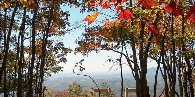 Hungry Mother State Park is known as the crown jewel of Virginia's Blue Ridge Mountains.