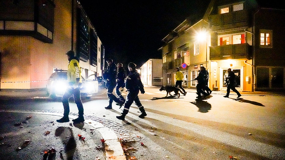 Norway bow-and-arrow suspect who allegedly killed 5 was flagged for radicalization