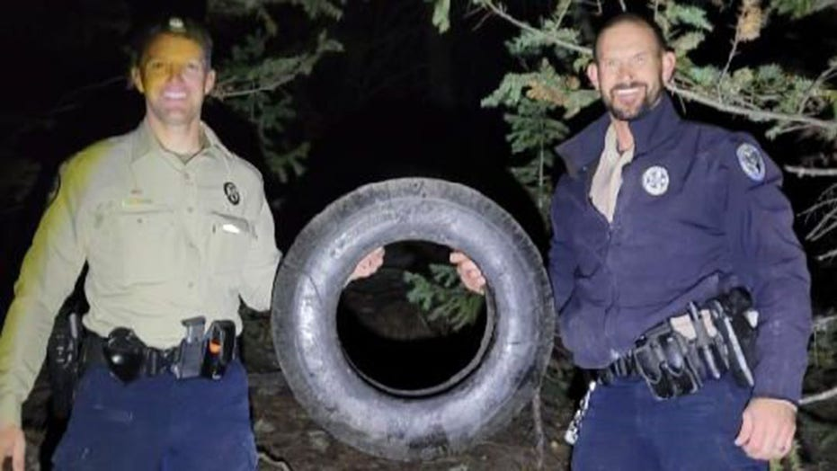 Wild elk has tire removed from neck after 2 years