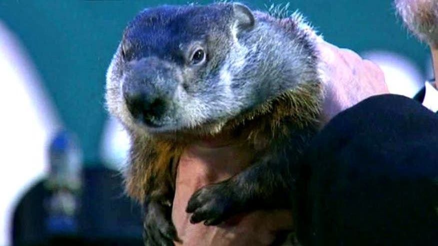 Groundhog Day celebration in Pennsylvania
