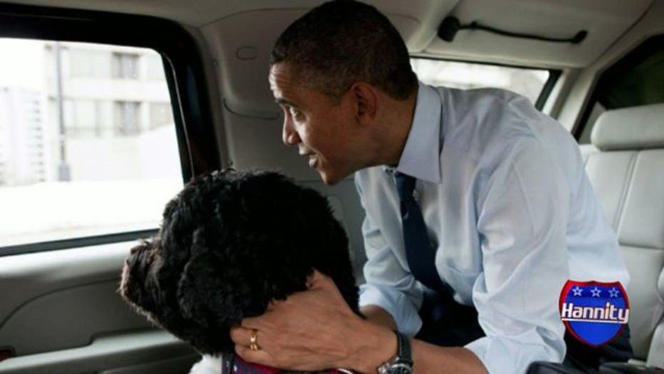'Dogfight' between Obama, Romney camps