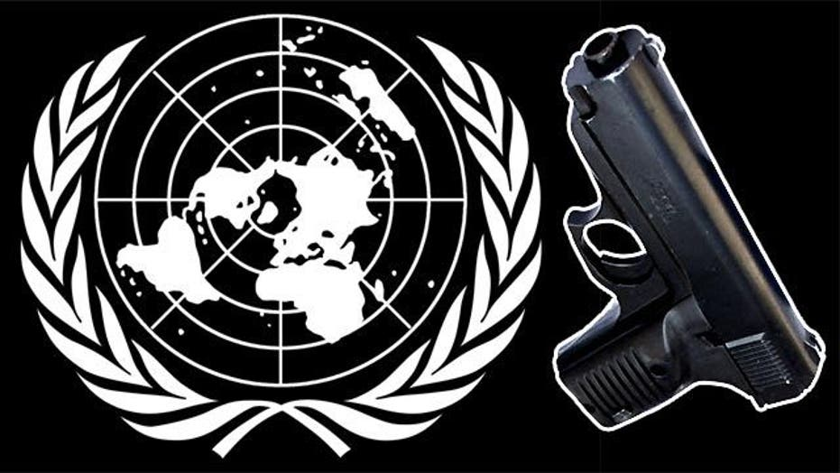 Fears about UN arms treaty