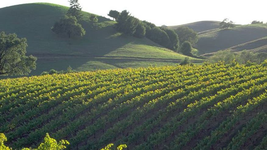 FoxNews.com finds five things to see and do in the Napa-Sonoma Wine Country of Califonria