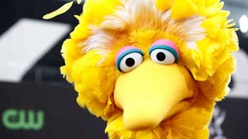 Senate coronavirus bill includes $75M for Corporation for Public Broadcasting, which funds NPR, 'Big Bird'