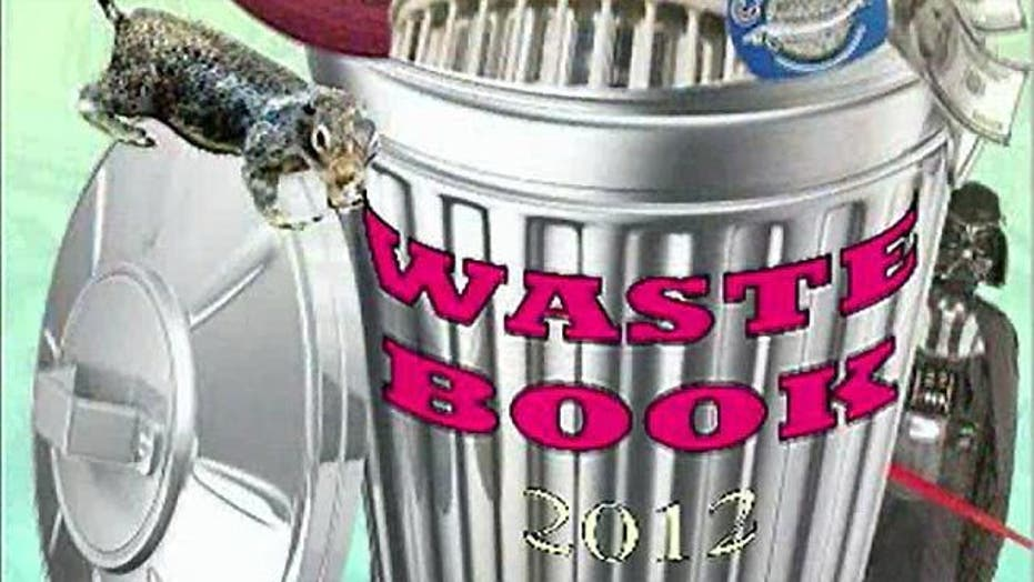 Lawmaker's 'waste book' show shocking government expenses