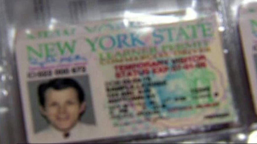 Government's fight against fraudulent driver's licenses