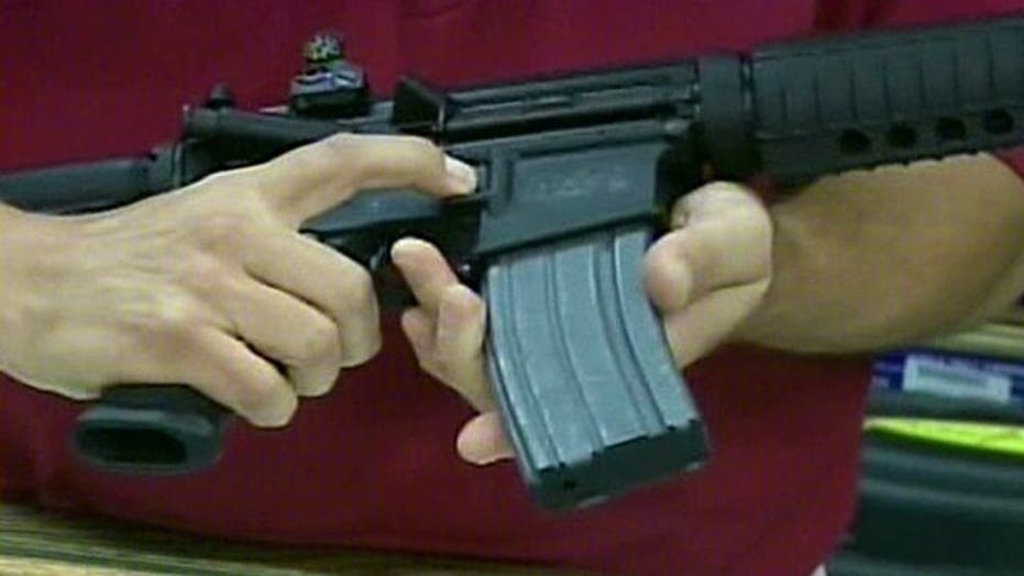 Impact of swing state gun owners on election